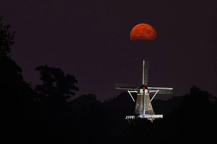 De Zwaan windmill in Holland captured by Karl Grundemann..jpg