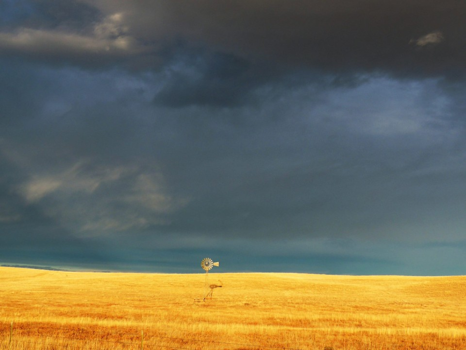 solitary windmill.jpg