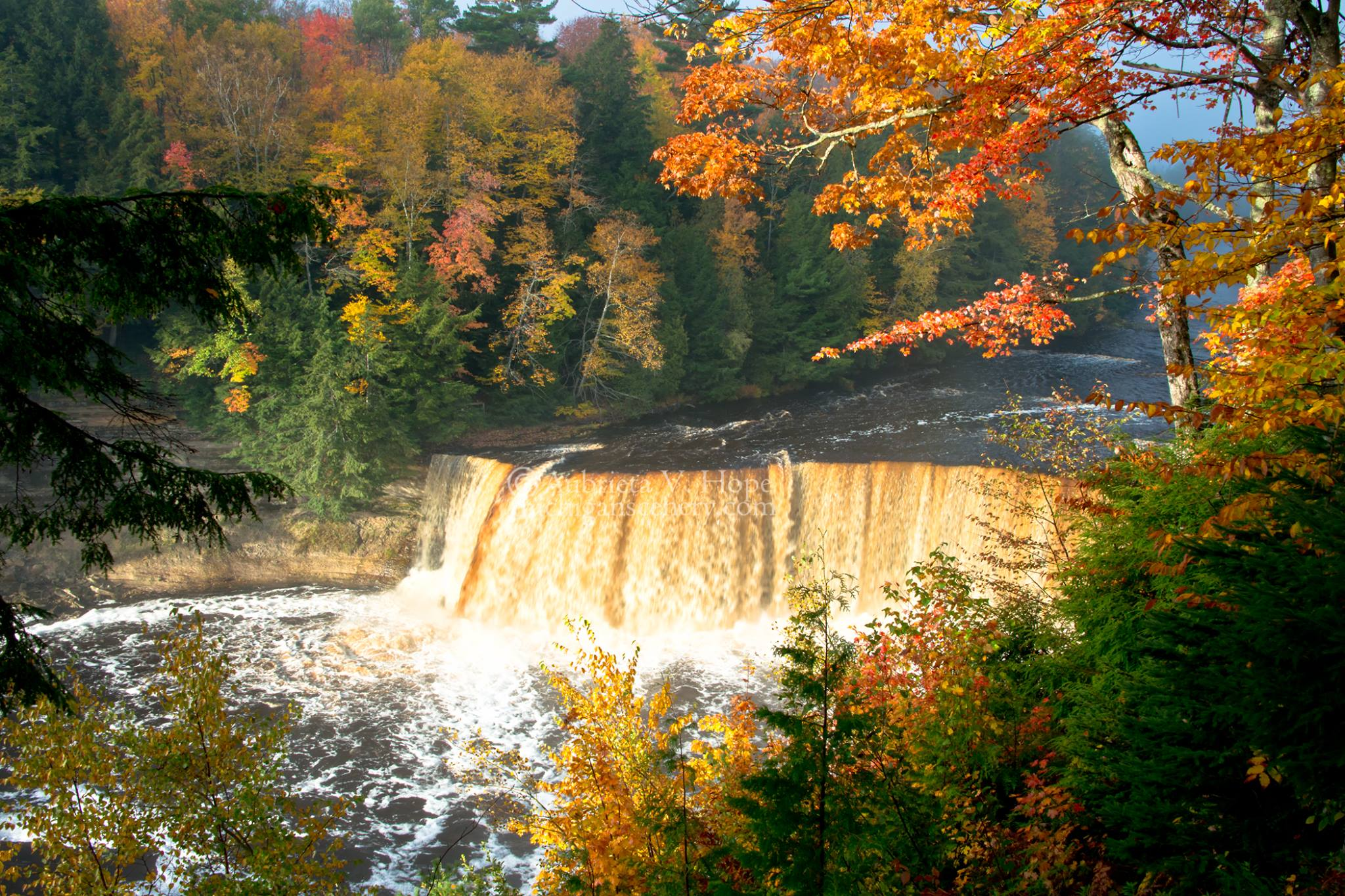 Magical Autumn Morning at Tahquamenon Falls.jpg