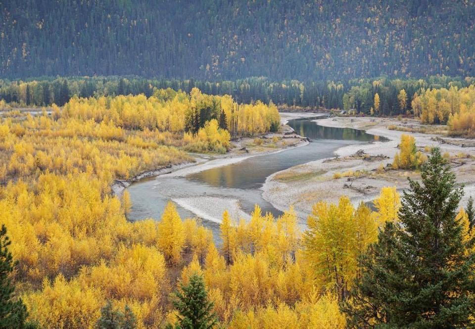 흐르는 강.jpg